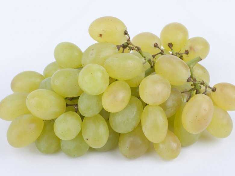 Olej z pestek winogron - dla zdrowia i urody