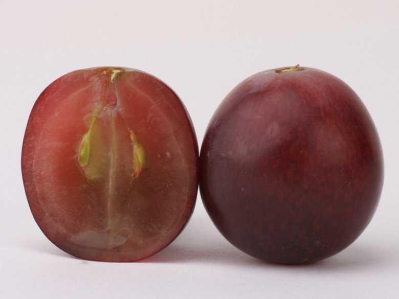 Jedzenie flawonoidów chroni mężczyzn przed chorobą Parkinsona