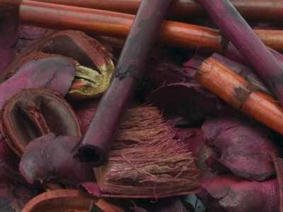 Cynamon, goździki, kardamon – zimowe wzmacniacze odporności