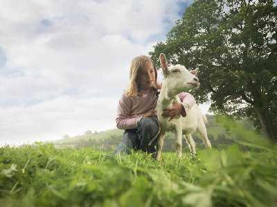 Mleko kozie u dziecka z alergią