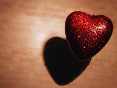 Budowa serca człowieka