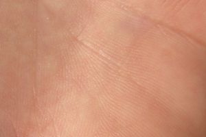 Jak zbudowana jest skóra człowieka?