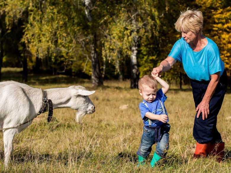 Problemy z zachowaniem dzieci pozostających pod opieką osób innych niż rodzice