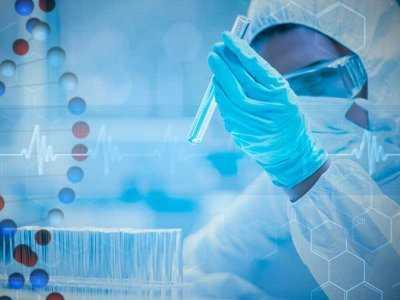Kobiece endometrium a dojrzałe komórki macierzyste? Przełom w medycynie
