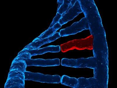 Defekt genetyczny jako czynnik ryzyka zespołu Retta