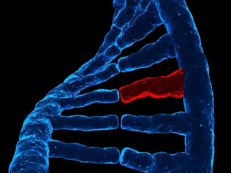Poszukiwania genów podatności na zaburzenie dwubiegunowe i schizofrenię w populacjach latynoamerykańskich