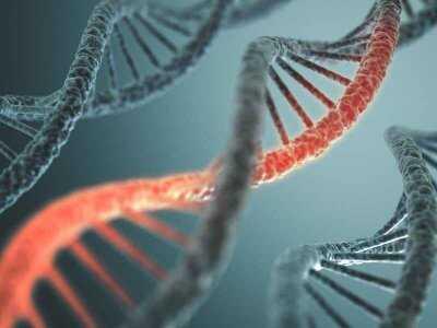 Mukowiscydoza - ryzyko choroby w rodzinach obciążonych nosicielstwem