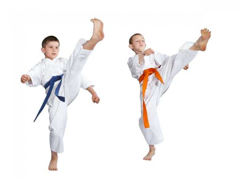 Dzieci uprawiające sztuki walki