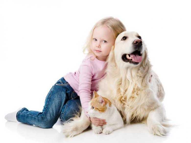 Ukochany pies lepszy od brata? Nowe spojrzenie na dziecięce relacje