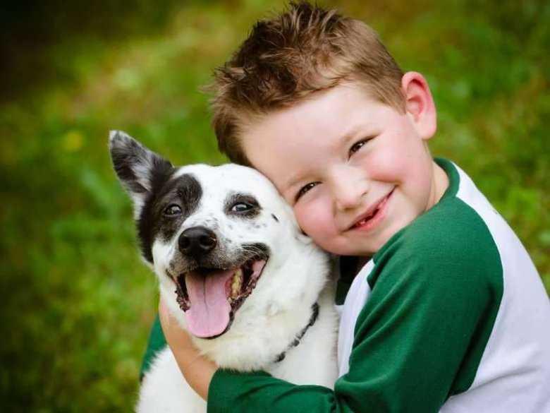 Psy zmniejszają ryzyko zaburzeń lękowych u dzieci
