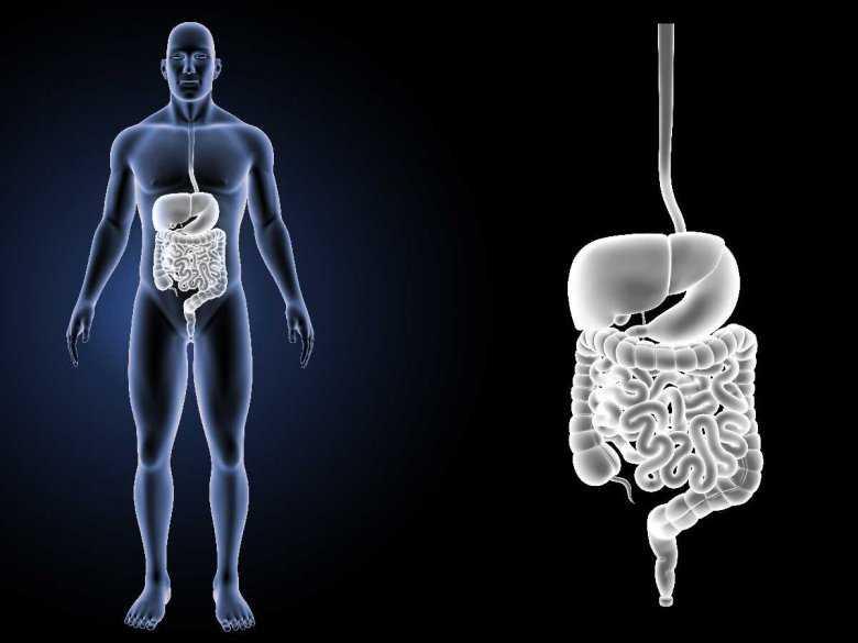 Przygotowanie do kolonoskopii - jak przebiega i na co zwrócić uwagę?