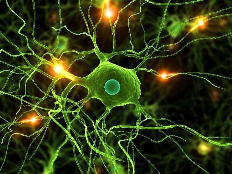 Neuropatia obwodowa, fot panthermedia