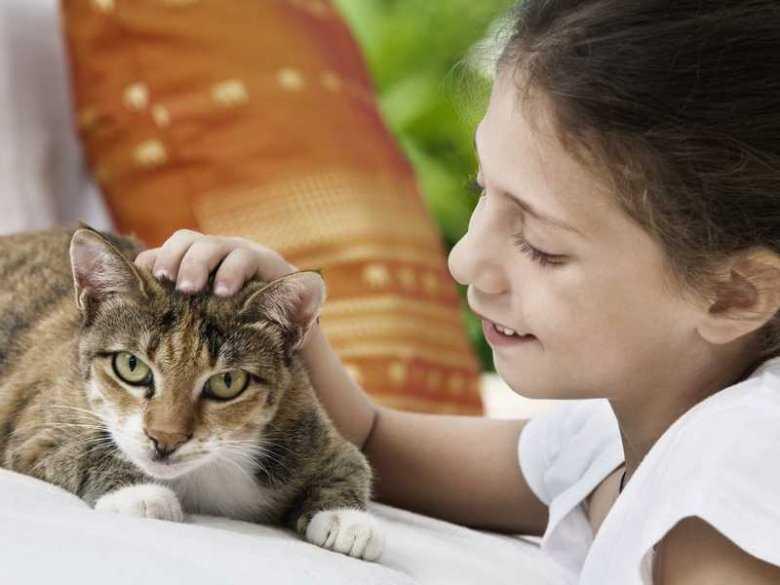 Czy dzieci, które mają w domu zwierzęta, są mniej narażone na alergię?