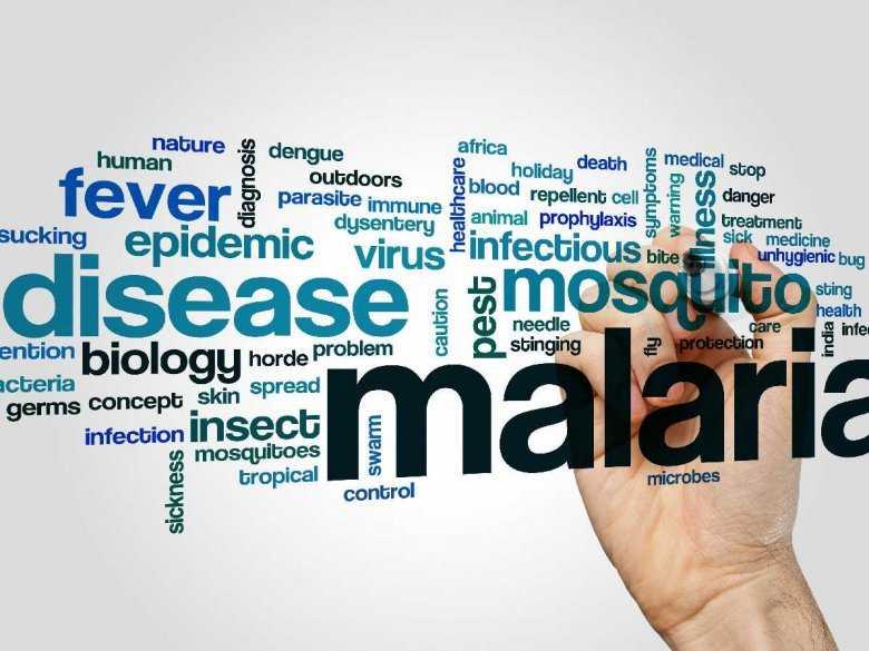 WHO ostrzega: Malaria zabija co dwie minuty jedno dziecko
