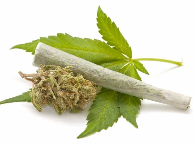 Marihuana, skręt