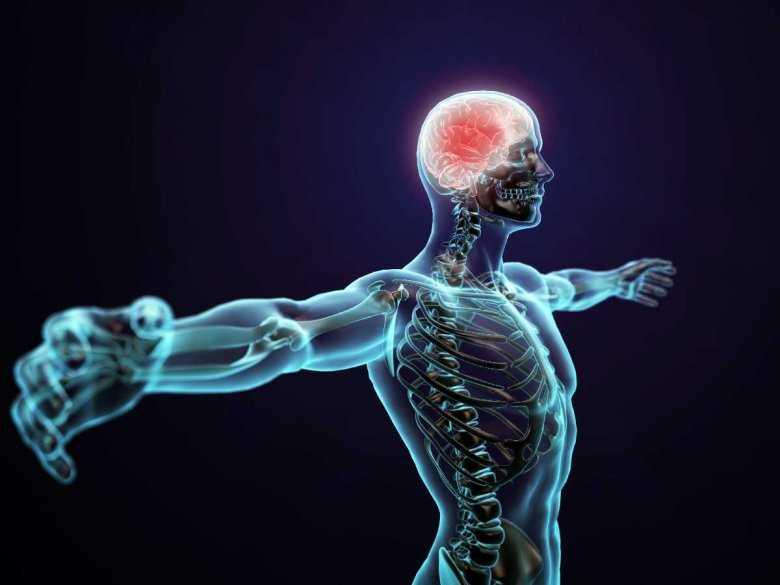 Ciało człowieka podczas badania