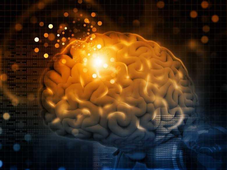 Czy każda decyzja zostawia ślad w mózgu?