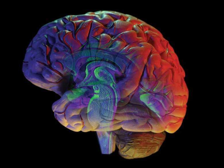 Migreny związane z anormalnymi naczyniami krwionośnymi w mózgu.