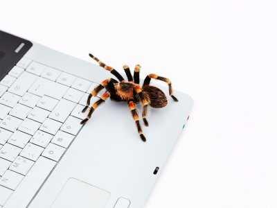 Fobia ma wpływ na postrzeganie obiektu strachu