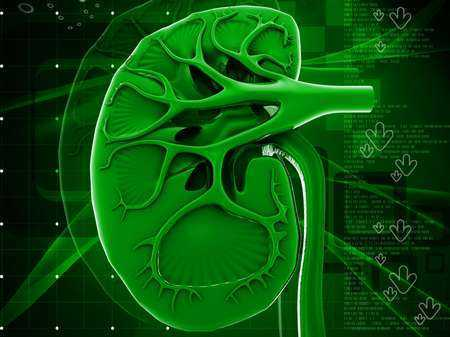 Doustna antykoncepcja może prowadzić do uszkodzenia nerek u pacjentek z cukrzycą typu 1