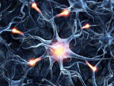 Czy komórki macierzyste mogą leczyć?