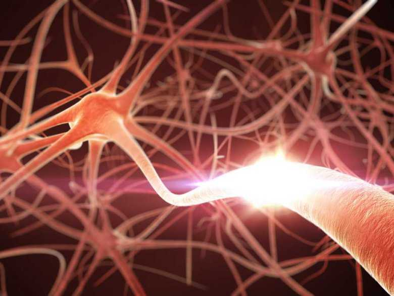 Skutki długotrwałego bólu dla działania ośrodkowego układu nerwowego