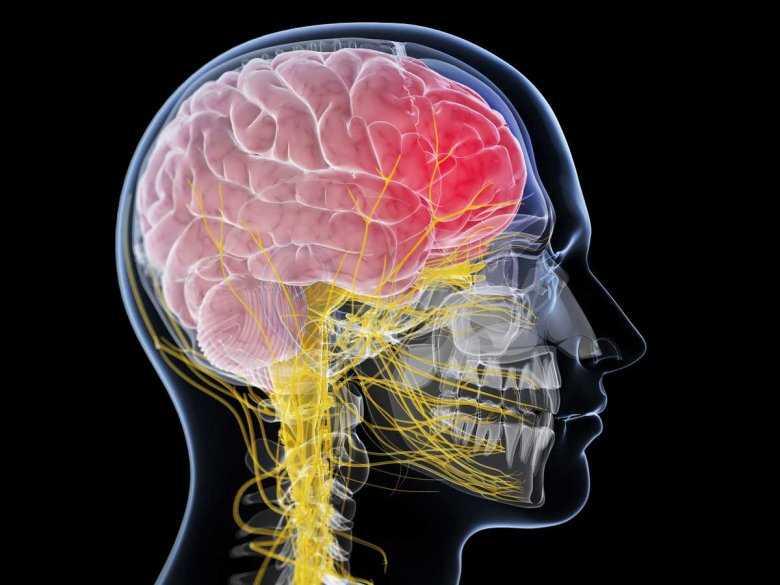 Postępowanie z chorym po urazie głowy