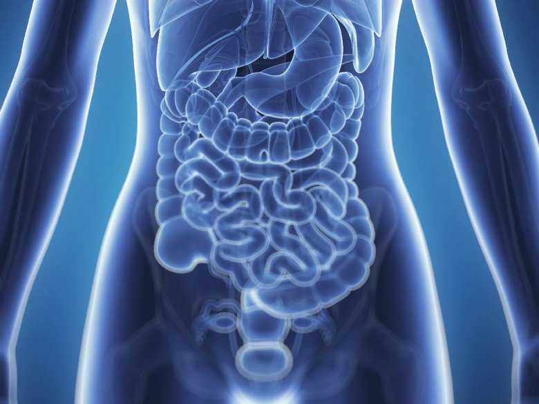 Preparaty enzymów trzustkowych - wpływ na czynność trzustki dziecka