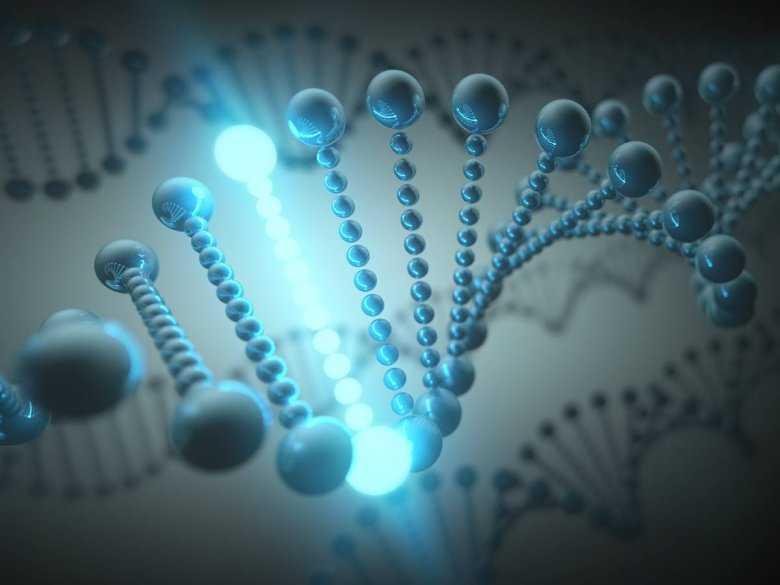 Typologia chorób genetycznych
