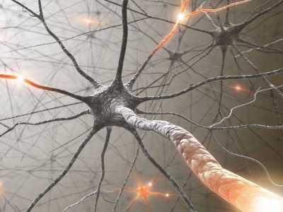 Czym są synapsy?