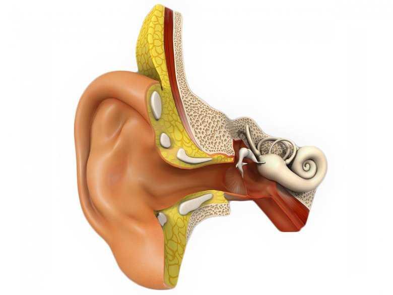 Krwawienie z ucha - objawy, diagnoza, leczenie