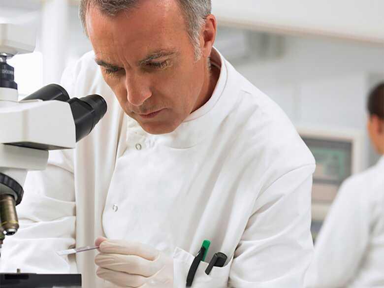 Badanie próbek pod mikroskopem