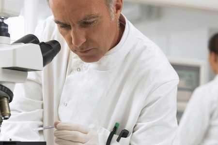 Naukowcy przywracają utraconą pamięć u myszy mających zaburzenia podobne do choroby Alzheimera