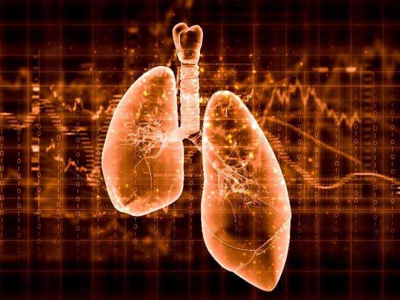Przeszczep płuc