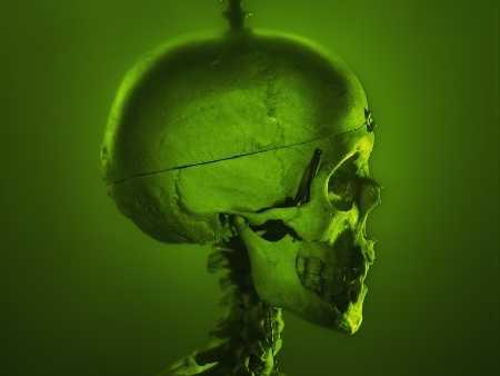 rbk01022_czaszka_mozg_glowa_zielony_ojoimages_cr