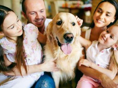 Rola zwierząt w psychoterapii