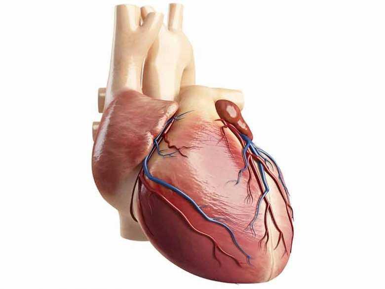 Tętniak pozawałowy serca