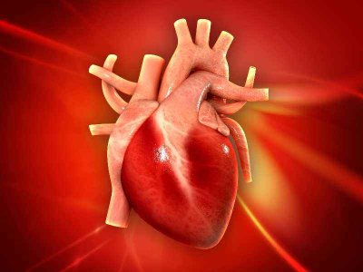 Co to jest sztuczne płuco-serce?