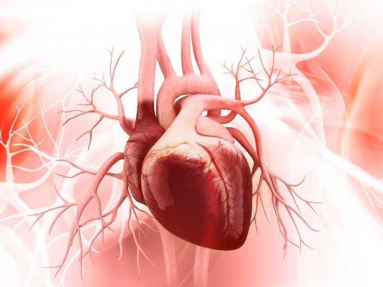 Sen chroni przed chorobami serca!