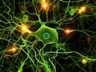 Paciorkowce grupy A jako czynnik wyzwalający schorzenia neuropsychiatryczne