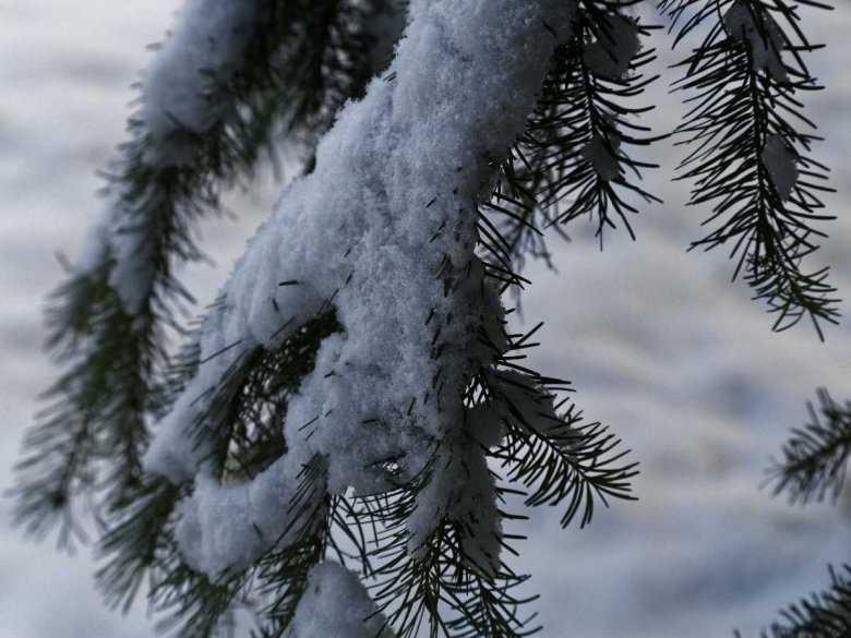 Piękna skóra również zimą
