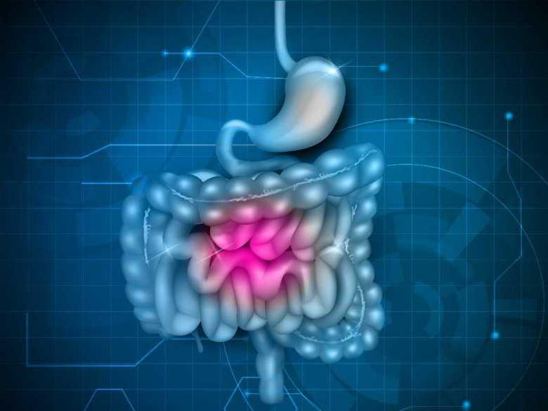 Jak przemiana różnych substancji w organizmie wpływa na zdrowie, czyli kilka słów o metabolizmie komórkowym